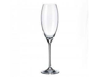 Набор бокалов для шампанского Crystalite Bohemia Carduelis/Cecilia 290 мл (6 шт)